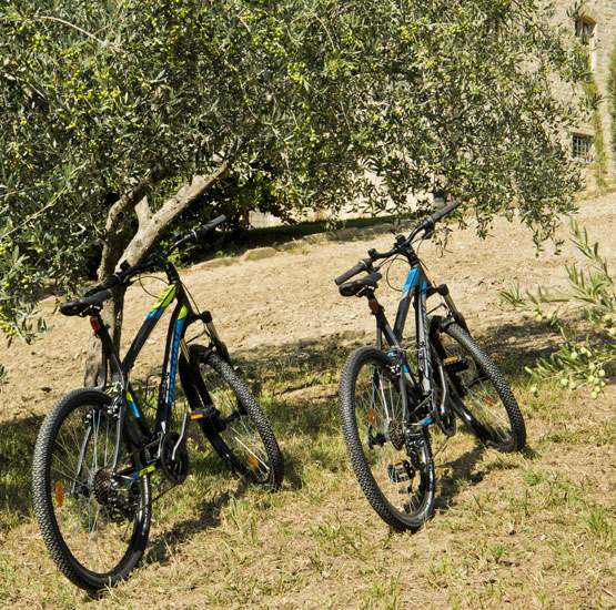 Mountain bikes and maps of the Umbria available. Green tourism Farmhouse Hotels in Umbria: Gaiattone Assisi holiday apartments.