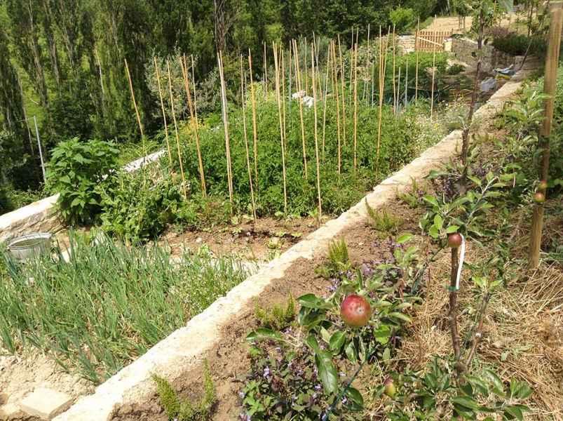 Vacances à Assise: Eco Resort Gaiattone. Jardin potager avec produit Bio Ombrie, Italie