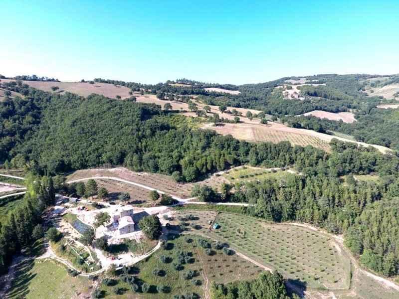 Agriturismo biologico design con piscina Gaiattone Assisi 50 ettari sulle colline dell'Umbria. Turismo verde in appartamenti vacanze